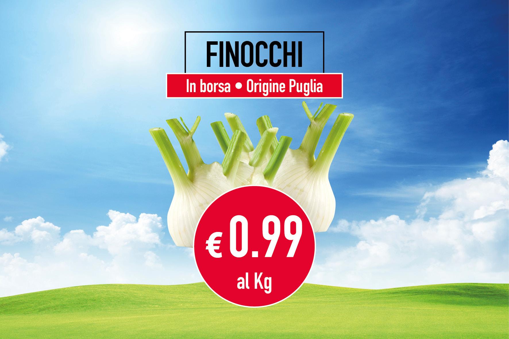 Finocchi